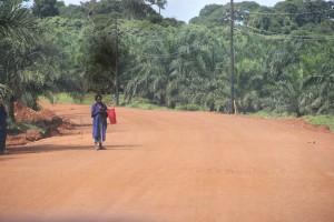 landgrabing