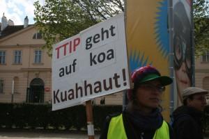 NoTTIP Wien (5)