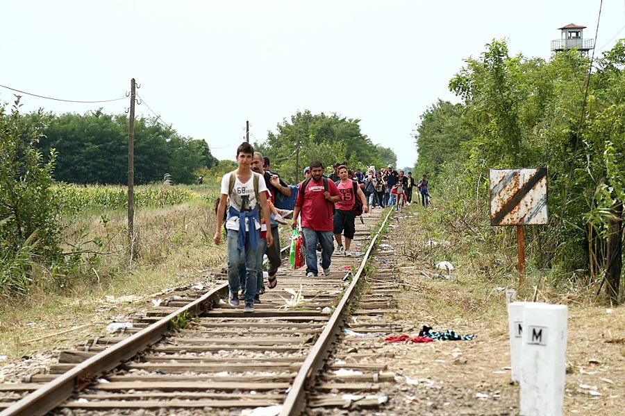 Flüchtlinge auf dem Bahnstück Röszke–Horgoš, August 2015 (Gémes Sándor/SzomSzed; Lizenz: CC BY-SA 3.0)
