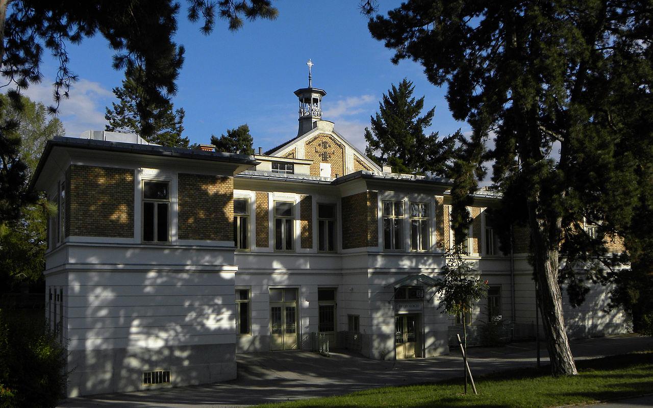 Wien   steinhof