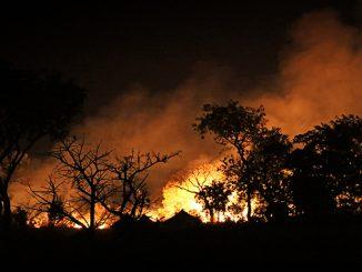 Zunehmende Wetterextreme verursachen immer höhere Schäden