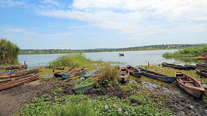 Bild: Fischerboote am Nil