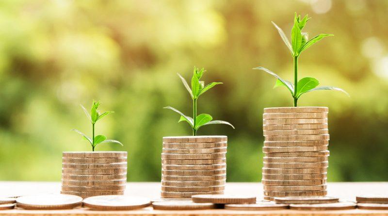 Geldstabel auf denen Pflanzen wachsen