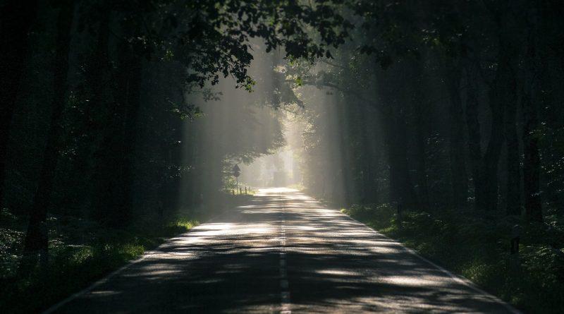 Straße im Wald, Sonnerstrahlen leuchten durch