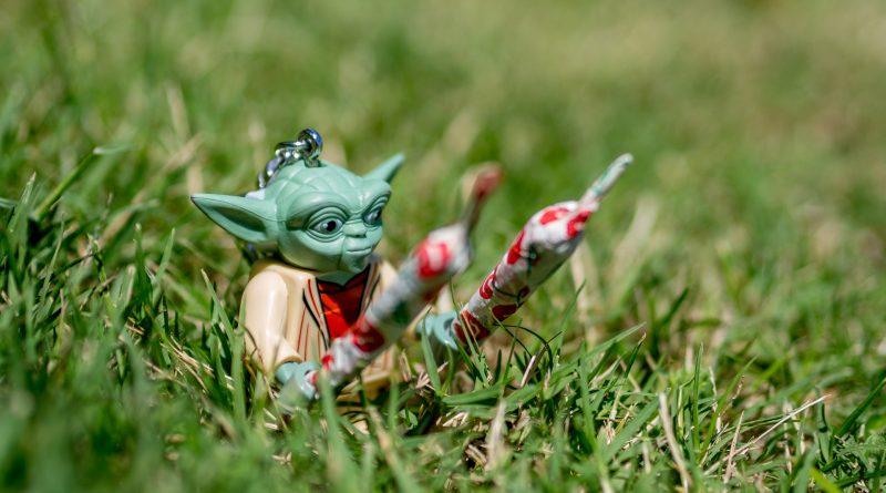 Miniatur-Yoda im Gras