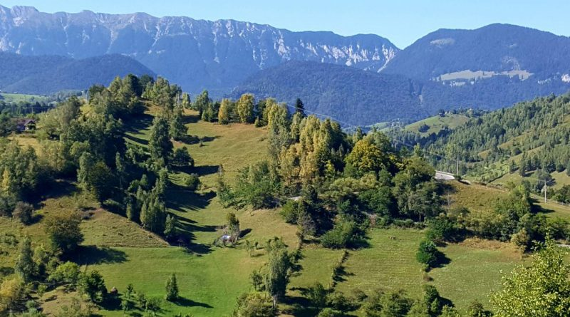 Landschaftsaufnahme aus den Karpaten