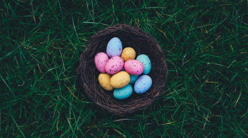 Bunte Eier in einem Nest