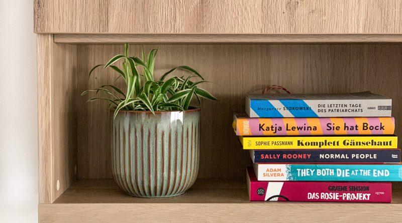 Staple Bücher auf einem Regal, daneben eine kleine Pflanze