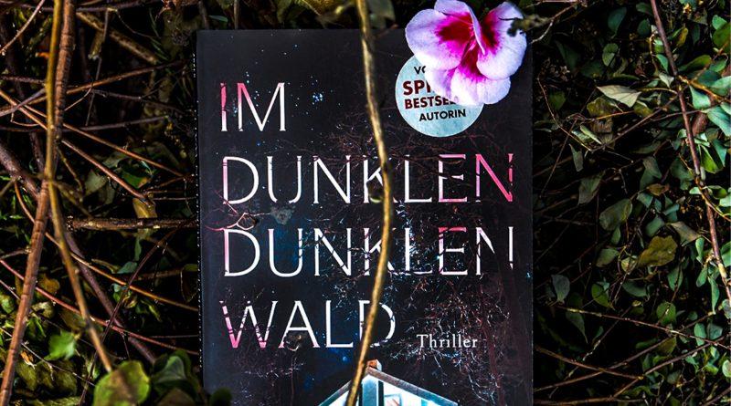 Buch im dunklen dunklen Wald liegt im Gras