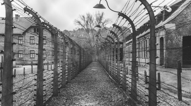 Stacheldrahtzaun in Auschwitz