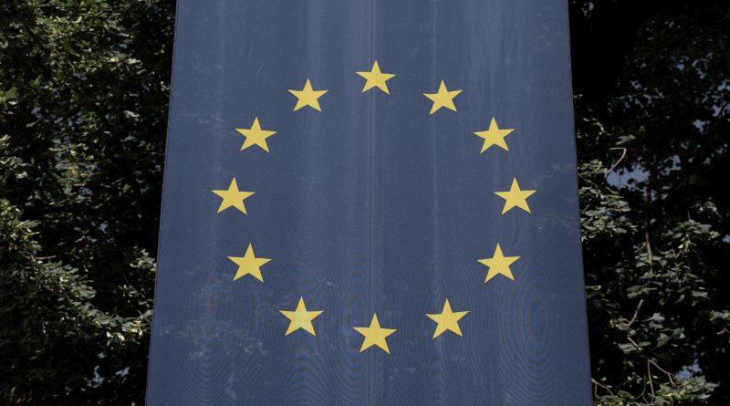 Nahaufnahme der EU-Flagge, dahinter Blätter von Bäumen
