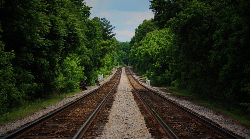 ZWei Eisenbahnschienen die durch einen Wald führen